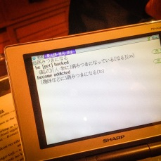 IMG_3101-2