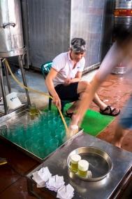 Fresh Beer (Bia Hoi)